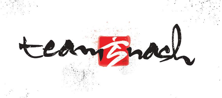 Team NASH logo design
