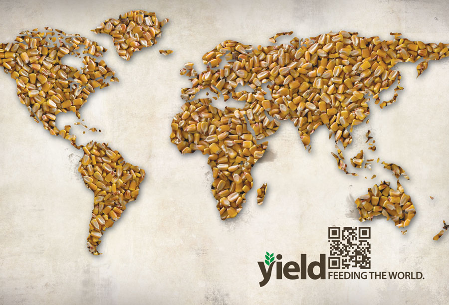 Yield Postcard design